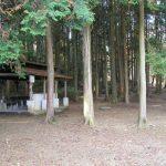 まだ間に合う!夏休みは宇都宮市森林公園と温泉旅行!