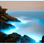 青の涙と言われる台湾のオーロラ?!美しく見れる時期や場所はどこ?アクセス方法は?