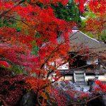 紅葉情報2017関西編 滋賀県の穴場 秋の寺社紅葉巡りを楽しむ