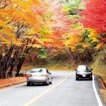 2017年関西でおすすめする日帰り温泉の紅葉情報を紹介